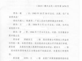 谢XX诉徐X、王XX股东损害公司债权人利益责任纠纷一案